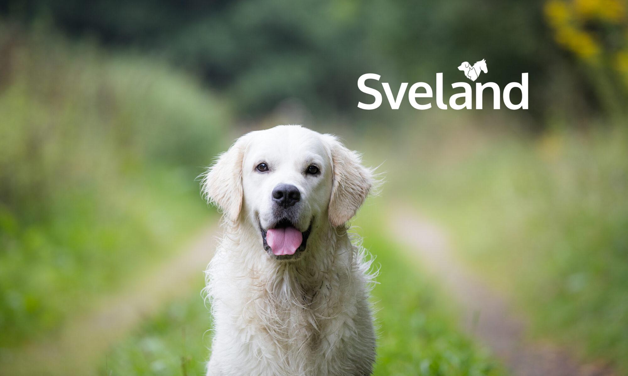 Svelands stiftelse